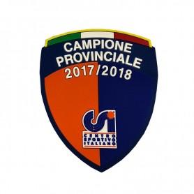SCUDETTO 3D CAMPIONE PROVINCIALE 2017/18